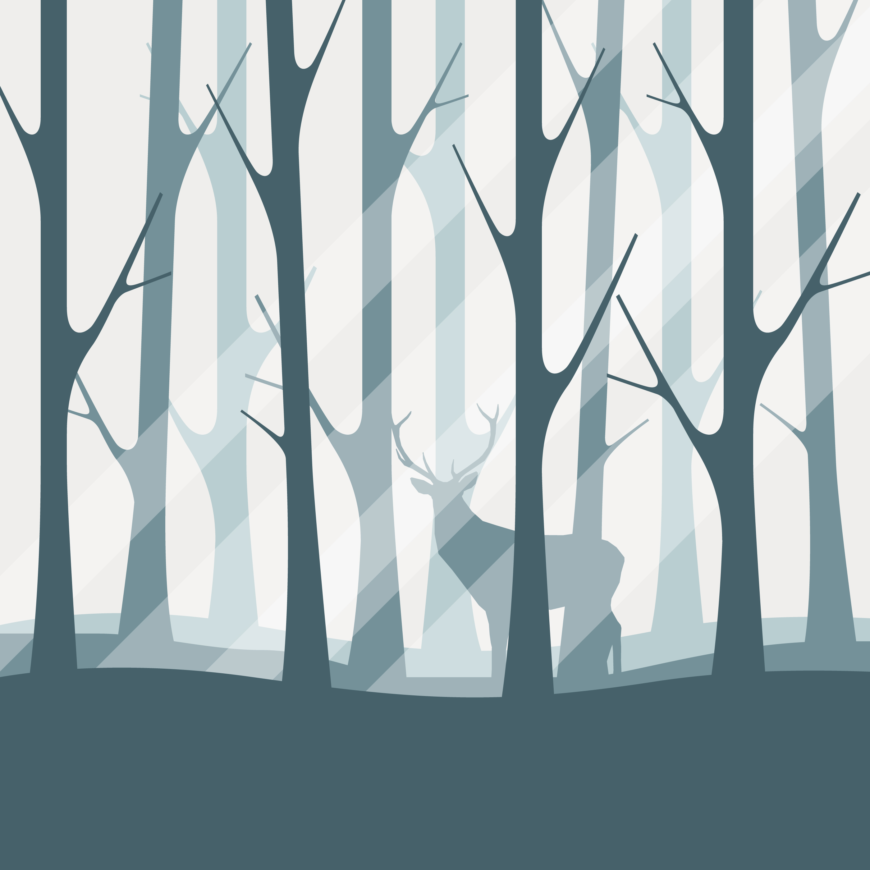 Deciduous Forest Silhouette Illustration Download Free