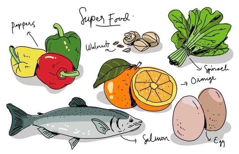 Super Foods Hand getrokken vectorillustratie