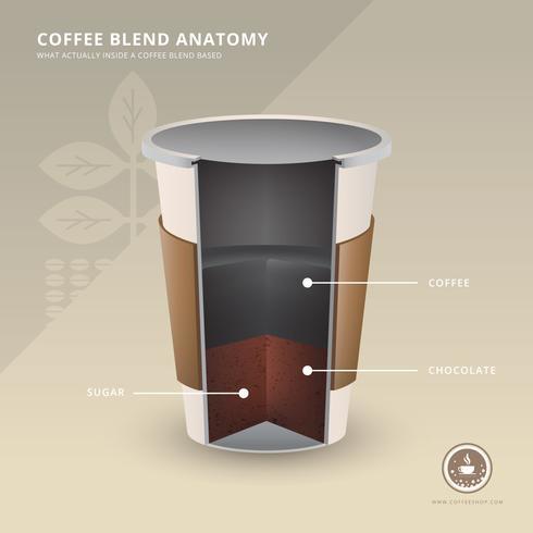 Logo de café avec des ingrédients de l'anatomie du café Illustration réaliste.