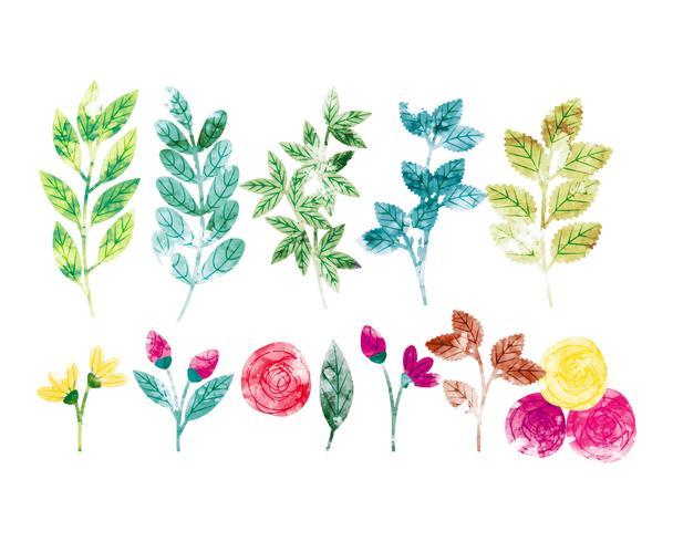 Vector acuarela primavera ramas y flores