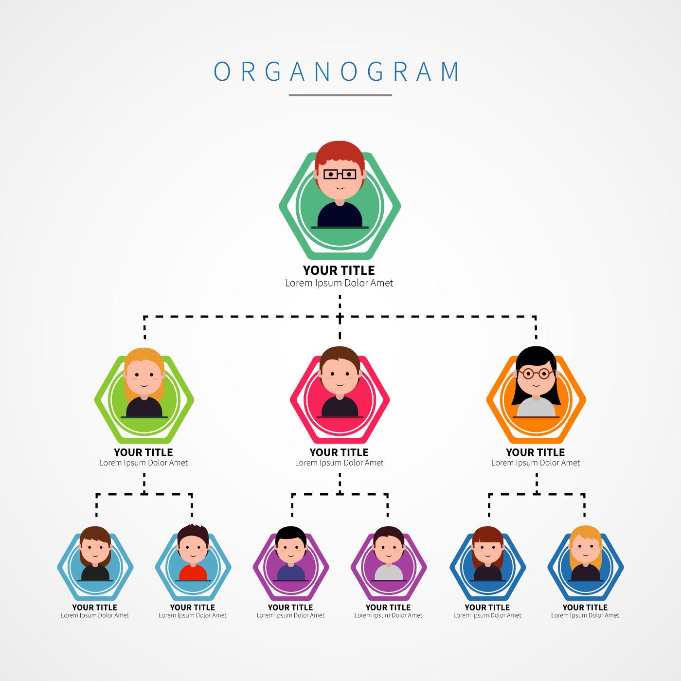 flat organogram illustration