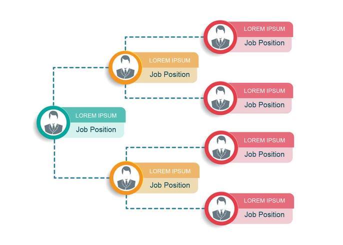 Graphique d'organigramme d'affaires