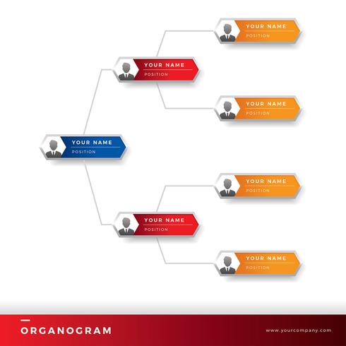 Organogram Template Vector Download Free Vector Art Stock - Organogram template