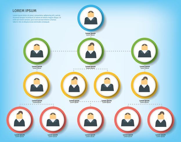 Business-Organogramm