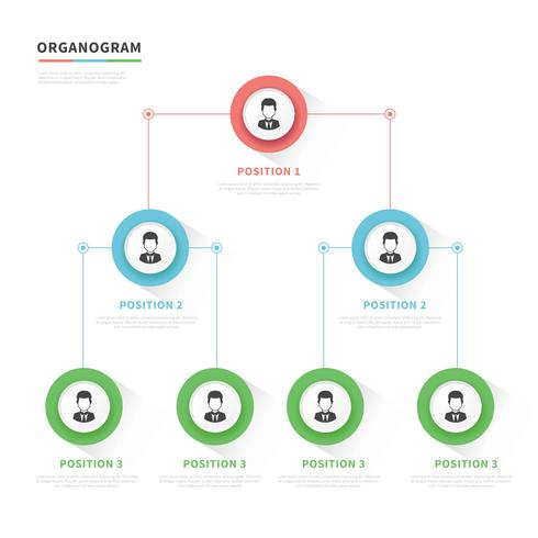 organogram modern vector design download free vector art