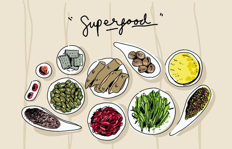 Super Foods on Bowl Top View Hand Drawn Vector Illustration