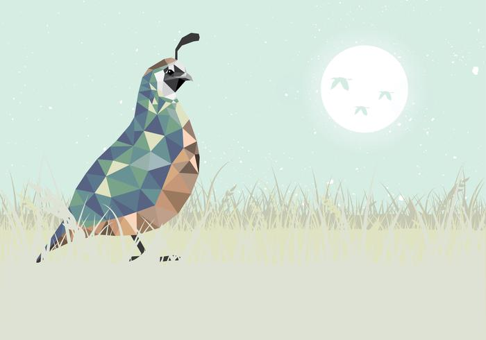 Quail Low Poly Style Vector