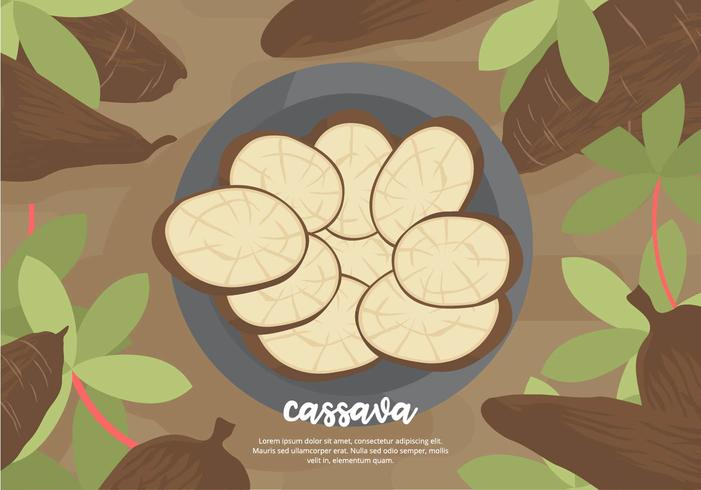 Cassava Background