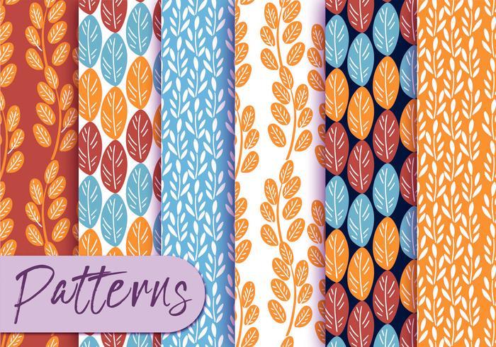 Ensemble de motifs de botanique coloré