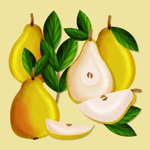 Vector Hand Drawn Pears