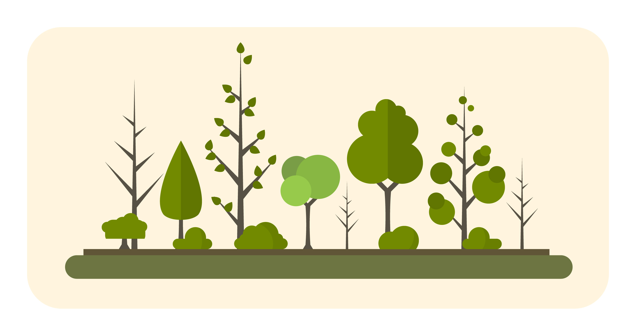 Vector Illustration Tree: Different Trees Collection