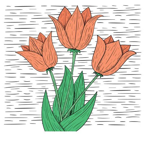 Vector Hand Drawn Flower Illustration