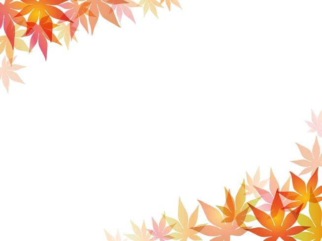 A maple leaf frame/background illustration.