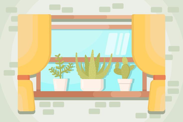 Succulents Vectors