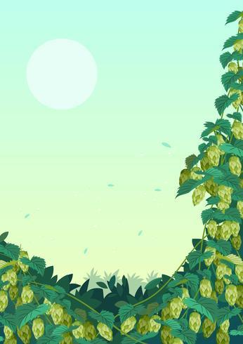Hopfenpflanze Backgound vektor