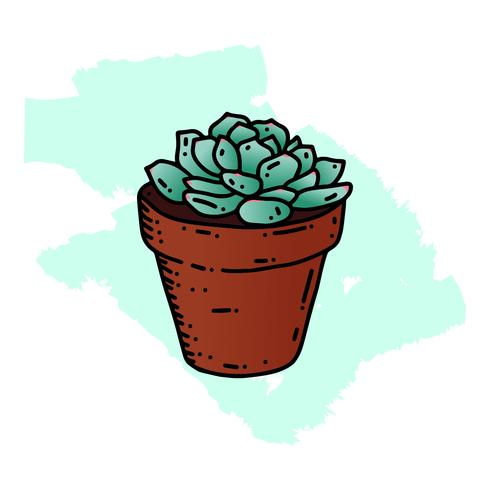 Succulents hand drawn style