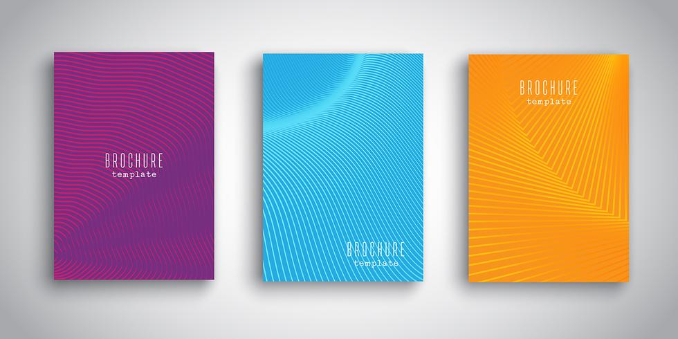 Brochure templates with abstract designs vector
