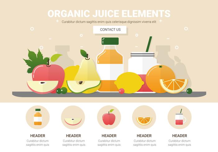 Assorted Fruits Vector Background