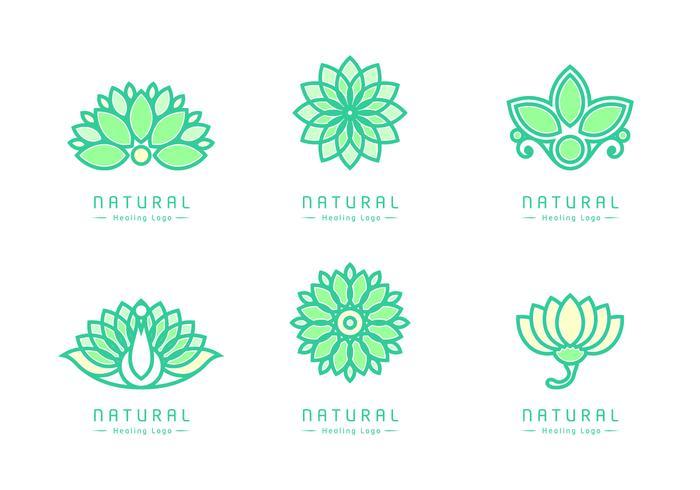 Vector de logotipos de curación natural