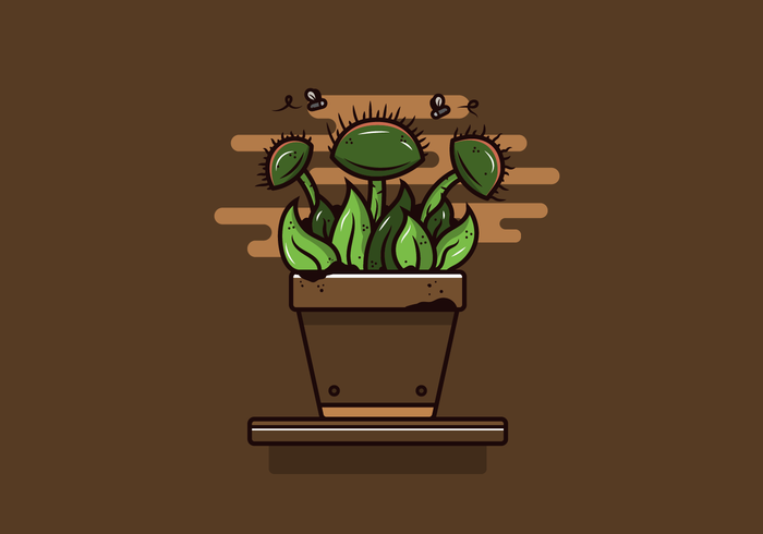 Venus Fly Trap Vector