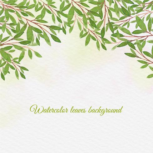 Vector Watercolor Background With Hand Draw Leaves