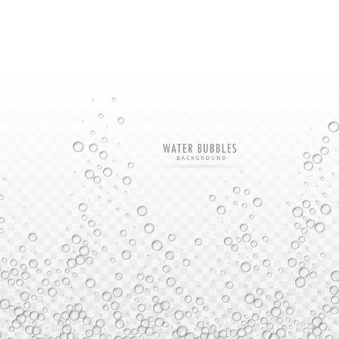 transparent water bubbles vector on white background