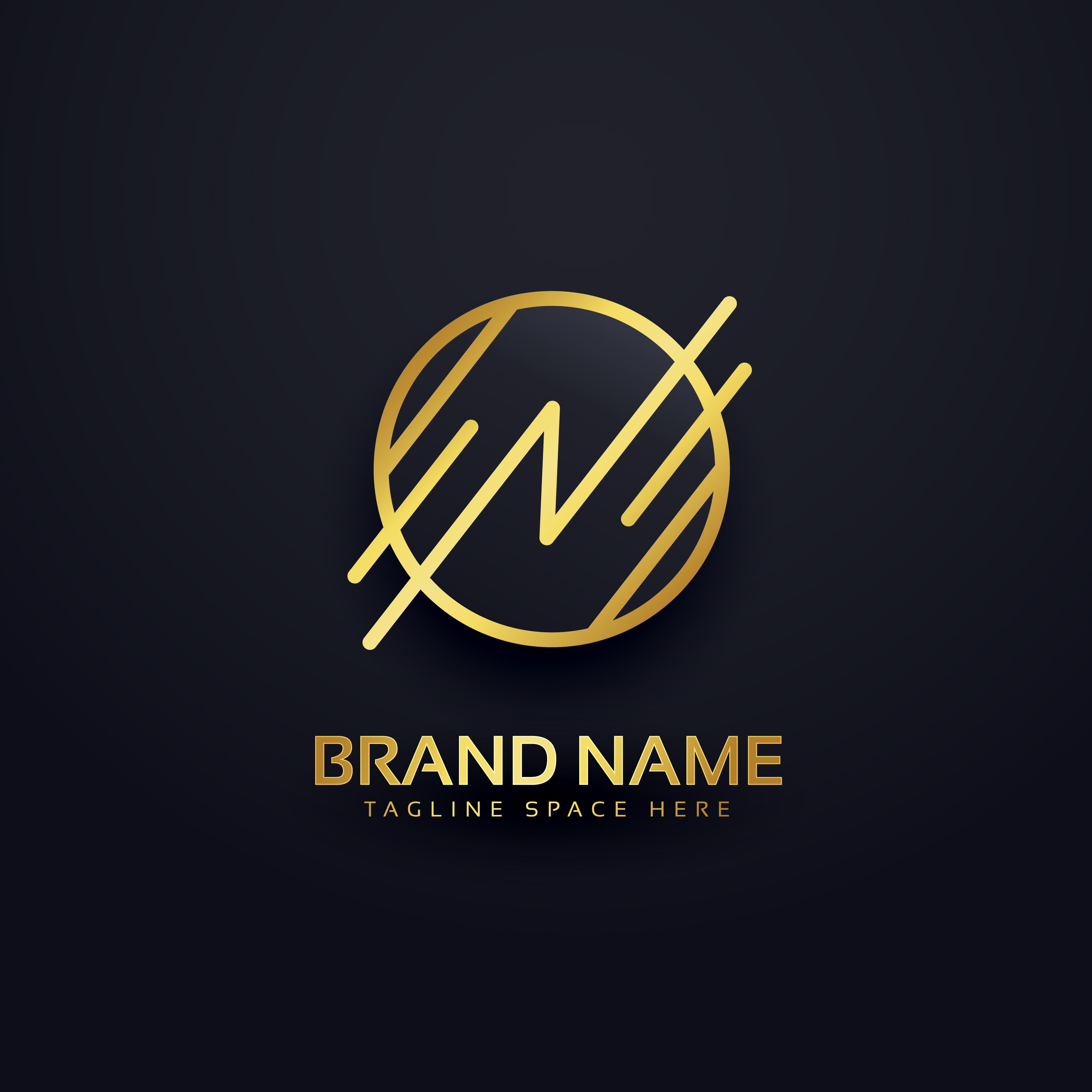 Premium Logo Design Package