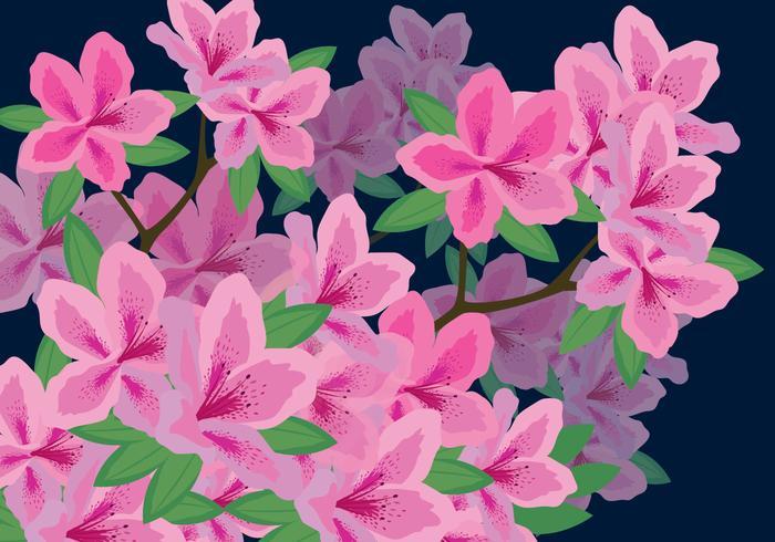 Ilustración de vector de flores de azalea