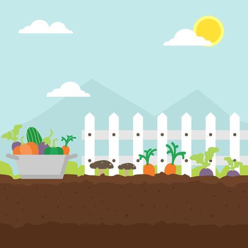 Ilustración de jardín de vegetales