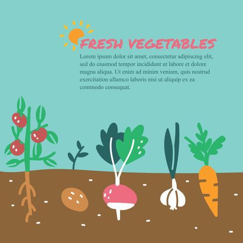 Garabatos de verduras frescas