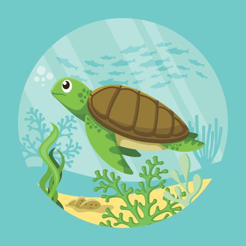 Schildkröten-Illustration