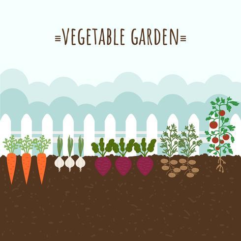 Vetor de jardim vegetal