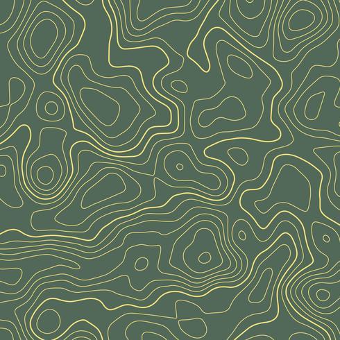 line topographic map contour elevation background