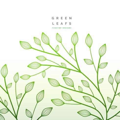 Decoracion floral de hojas verdes. ilustración de la naturaleza