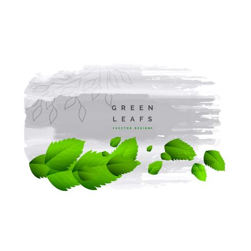 fesh green leaves vector background