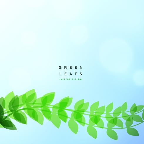 beautiful green leaf eco nature vector background
