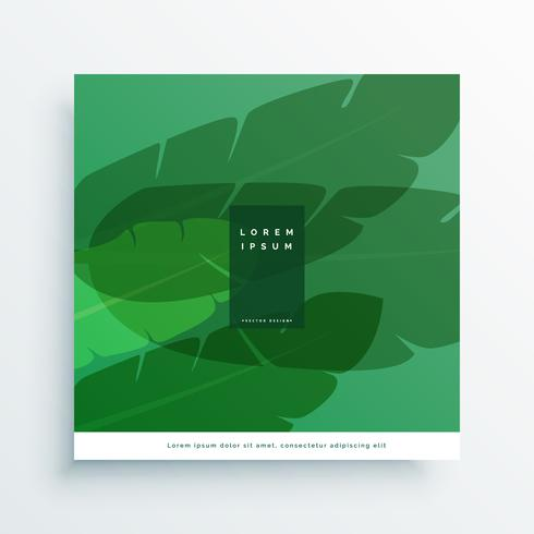 banana leaves vector card design