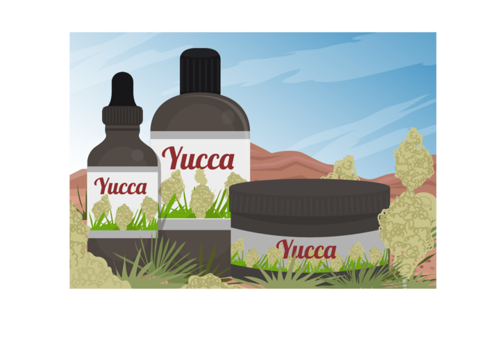 Yucca Scene And Yucca Medicine Extract Of Vector