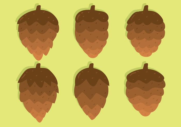 pine cones collection vector
