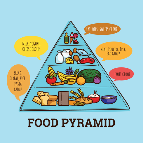 Pyramides alimentaires