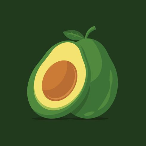 Avocado vectorillustratie
