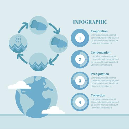 Vector Water Cycle Infographic