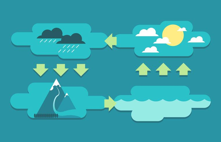 water cycle infographic Vector