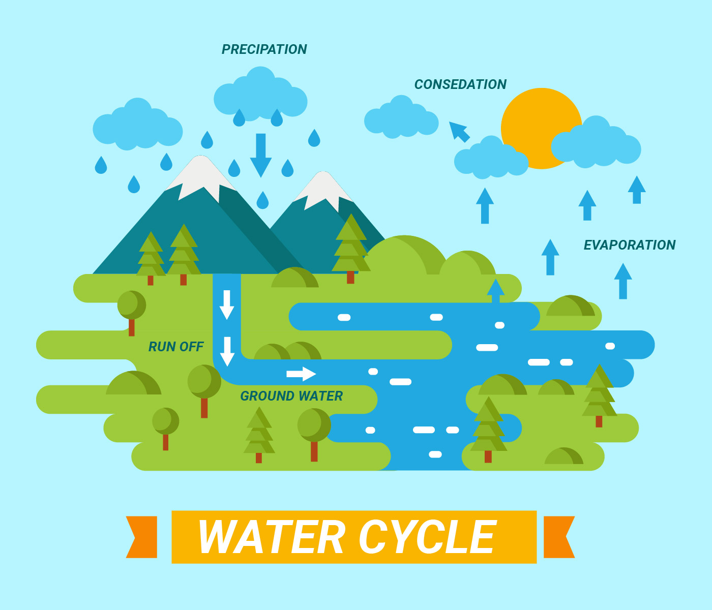 Realistic the water cycle diagram