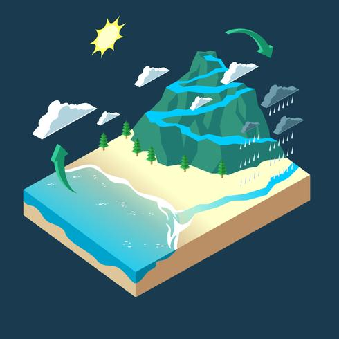 Isometric Water Cycle Infographic Vector