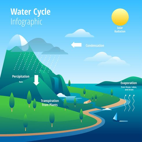 Illustration de l'infographie Cycle de l'eau