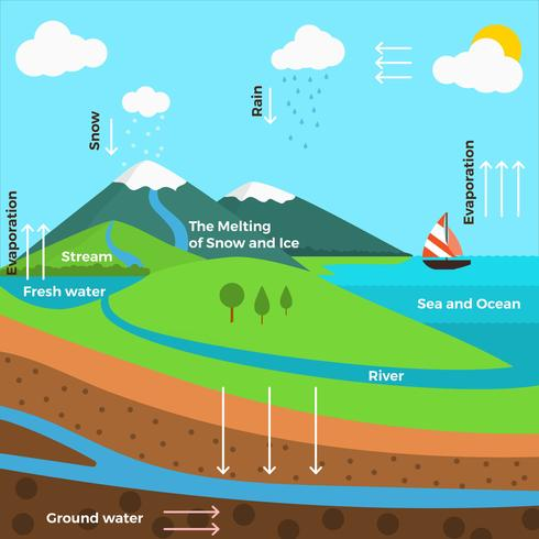 Flat water cycle infographic Vector