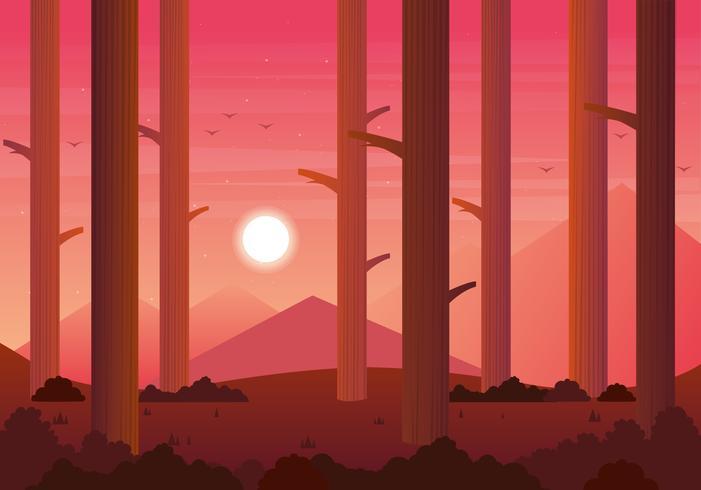 Vector Red Sunset Landscape Illustration