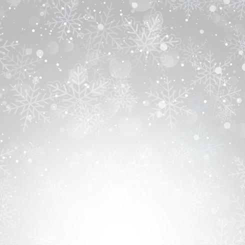 Silver Christmas snowflake background  vector