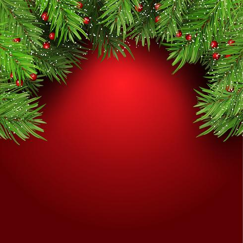 Christmas background with fir tree branches and berries 1410 vector